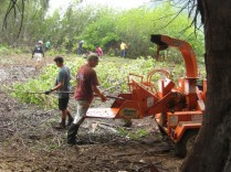 Waipa Foundation chipper & crew, 4-21-13