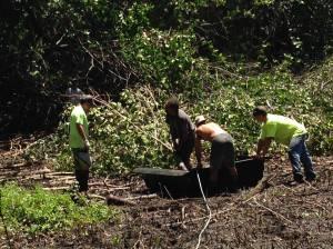 Mangrove Hauling Sled