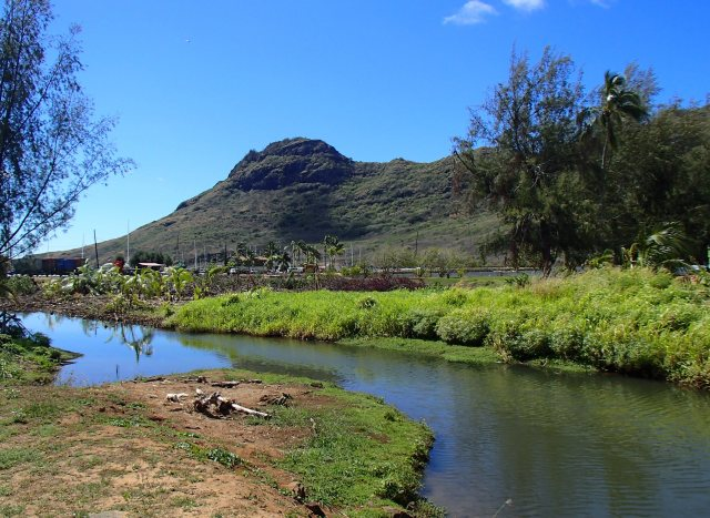 View of the Puali from Niumalu Rd.