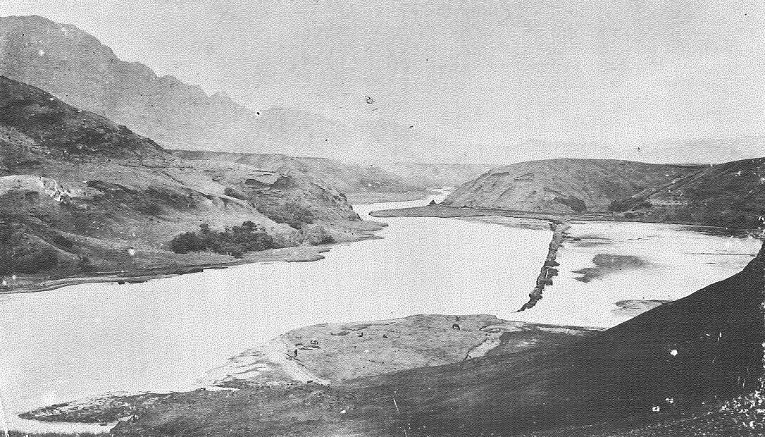 alakoko 1890